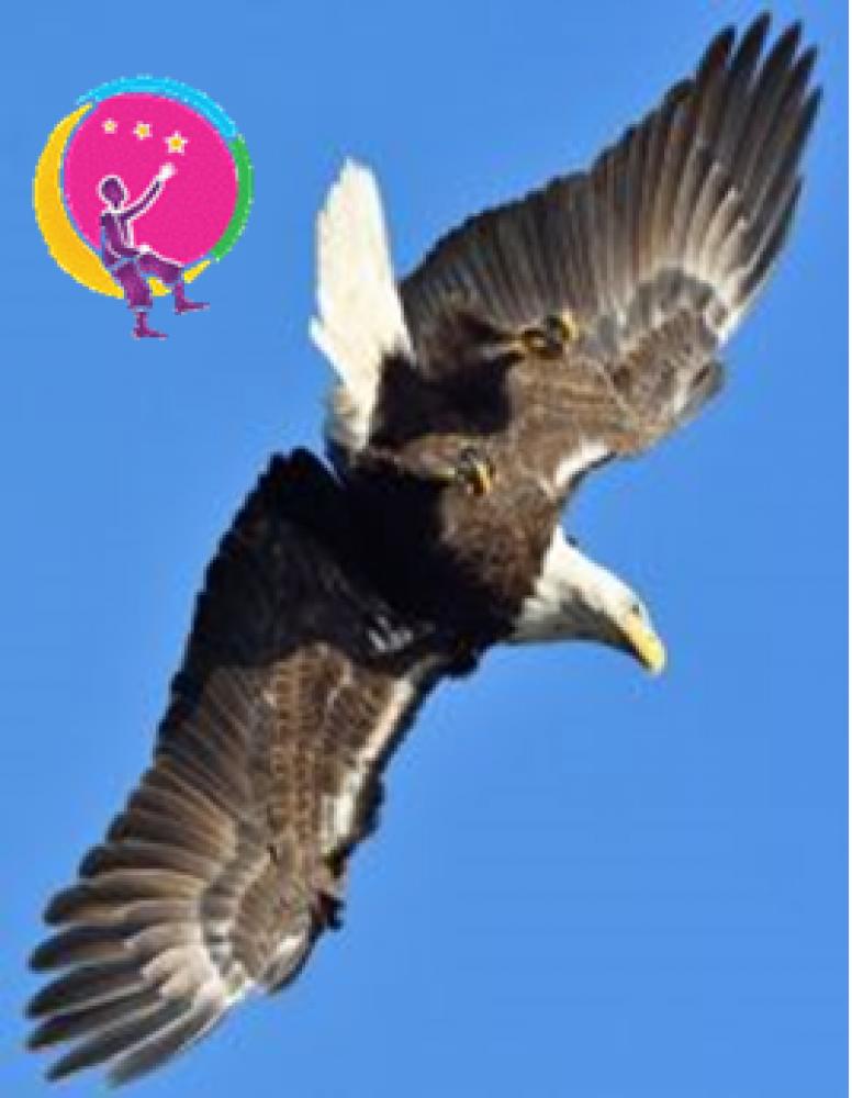 site de rencontre ange d amour colombes